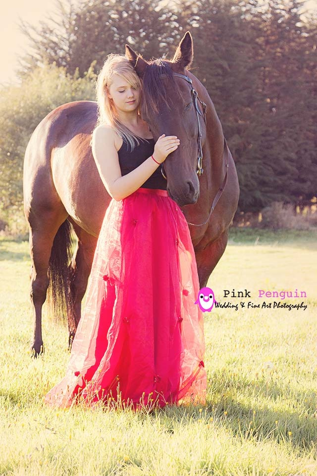 Series of the beauty of horses