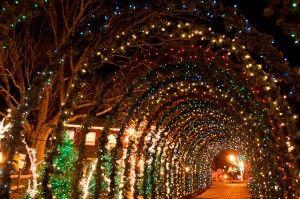 Christmas Light Tunnel .. Favorite of grandsons .. Peddler's Village