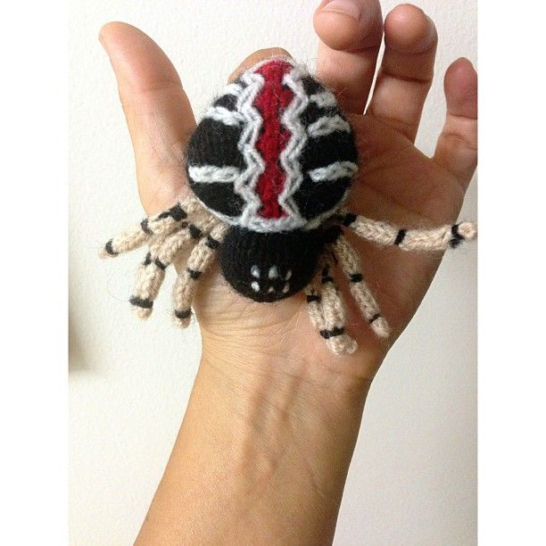 Redback Spider Puppet Spotted By Kim Tairi