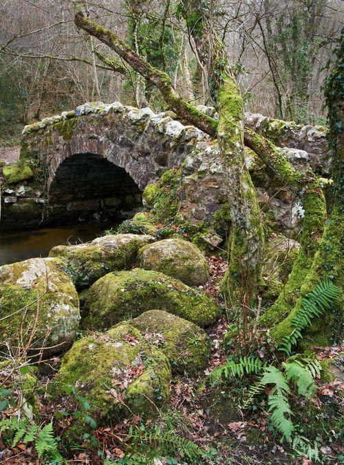 Hisley Bridge spanning the River Bovey in Hisley Wood, Dartmoor, Devon, England…