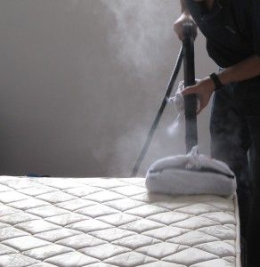 Wet Carpet Clean team is well established company in Brisbane which provides you all types of mattress cleaning and sanitizing services.