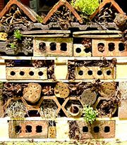 I think this is a fun kid project! Make a wildlife stack: This luxury wildlife hotel is easy to make. Made of recycled materials, wildlife stacks replicate natural features sought by wildlife in your garden
