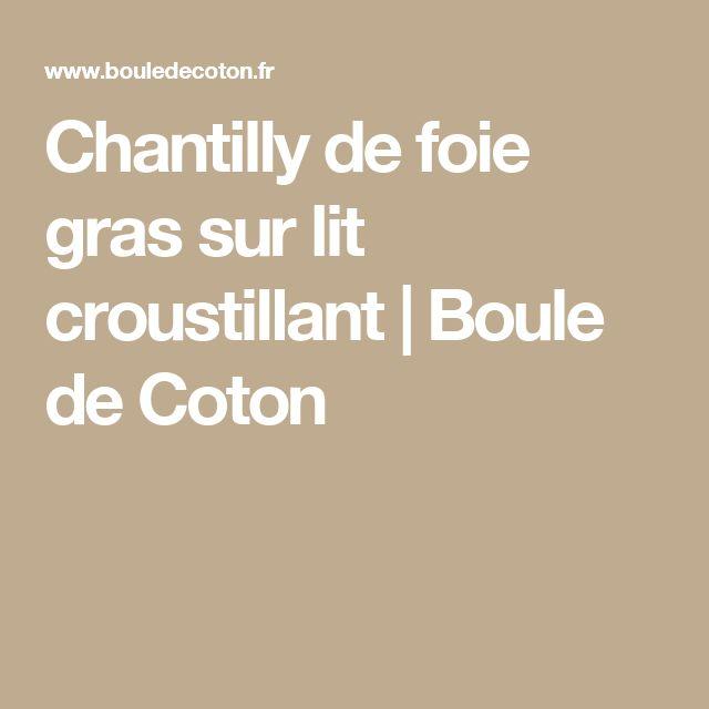 Chantilly de foie gras sur lit croustillant   Boule de Coton