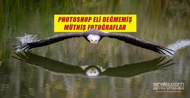 PHOTOSHOP ELİ DEĞMEMİŞ HARİKALAR DİYARI – 1.Bölüm