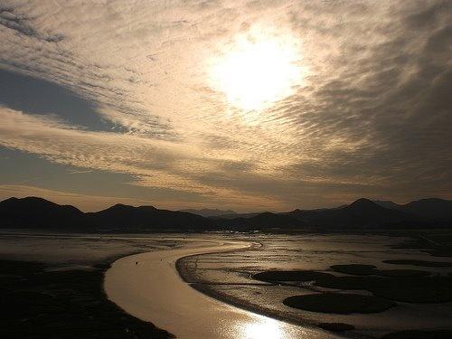 Suncheon Bay, South Jeolla Province.