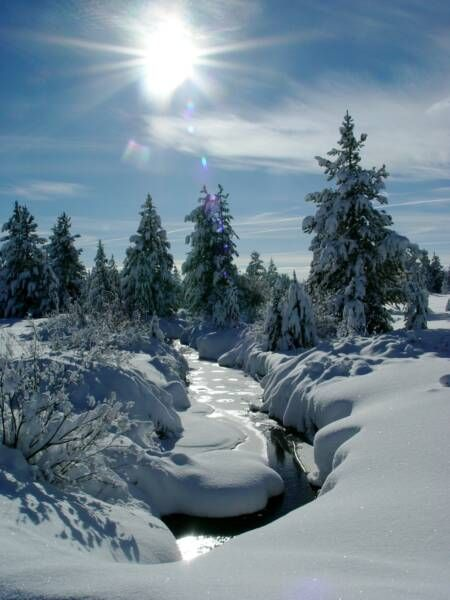 Image Result For Ice Caves Island Park Id