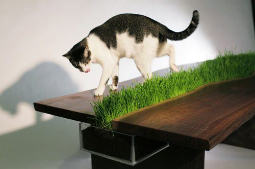 Table with a Planter by Emily Wettstein