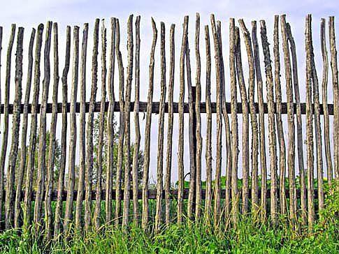 Rustic but modern garden fence