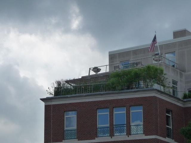 Harvard Square - Winthrop Square penthouse, Cambridge, MA | Cambridge, Massachusetts | Harvard square, Harvard, Cambridge