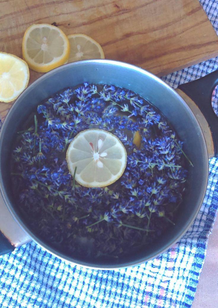 Dlouho slibovaný článek o výrobě domácích sirupů a limonád je na světě! Letní osvěžení z přírody! Co takhle levandule, máta, jahody, černý bez?