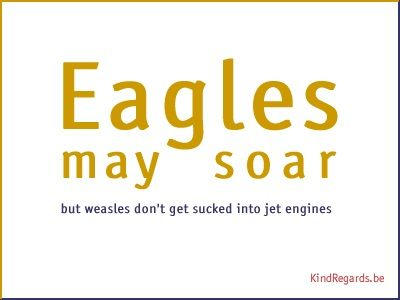 Eagles may soar. But weasles don't get sucked into jet engines.