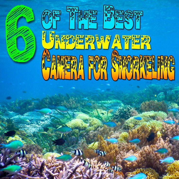 http://lizzysfaves.etidbitz.com/best-underwater-camera-for-snorkeling/  Best #Underwater #Camera for #Snorkeling