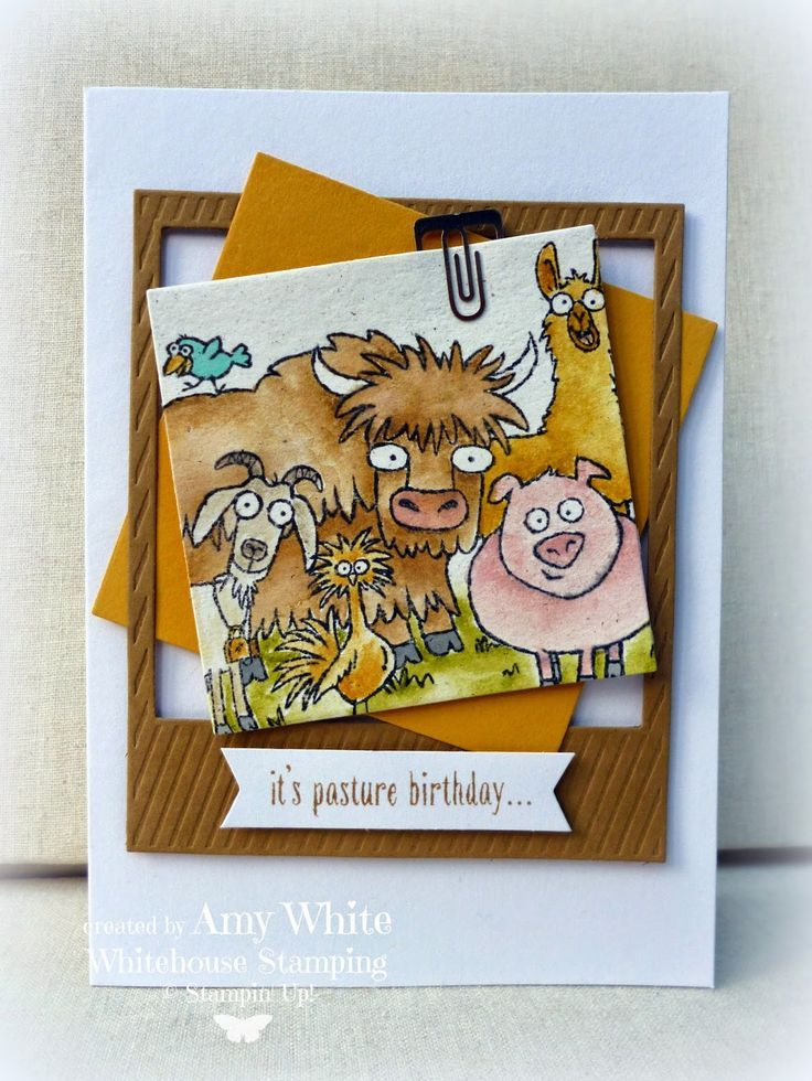 Stampin' Up! - From the Herd