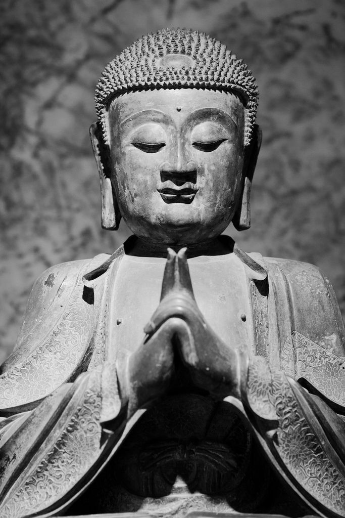 The Uttarabodhi mudra is called the mudra of supreme enlightenment. This mudra is formed with both hands placed at the heart; index fingers touching and pointing upwards, the other eight fingers intertwined. It is a hand gesture that clearly evokes a sense of unshaken unity within oneself in aligning with the One source. ♥♥♥