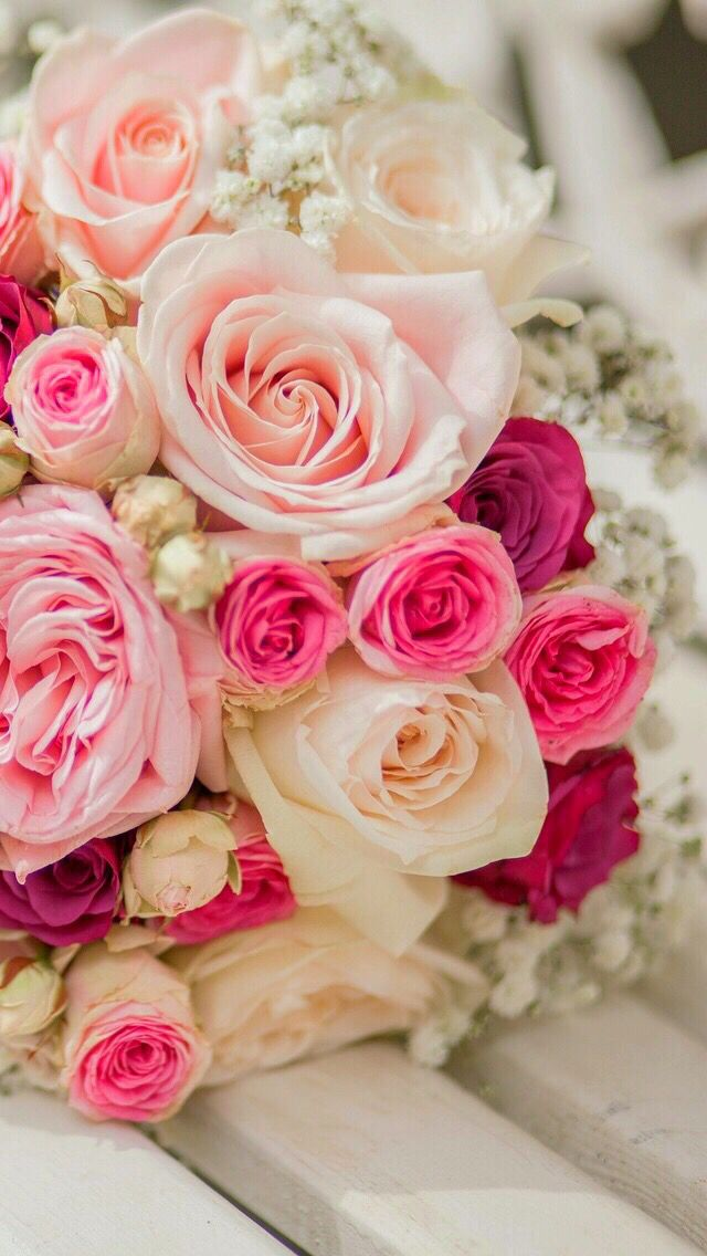Wallpaper iPhone /beautiful/roses⚪️