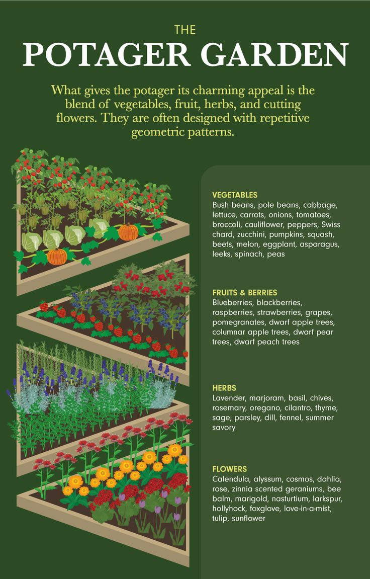 643 best images about herb garden on pinterest gardens for Potager garden designs