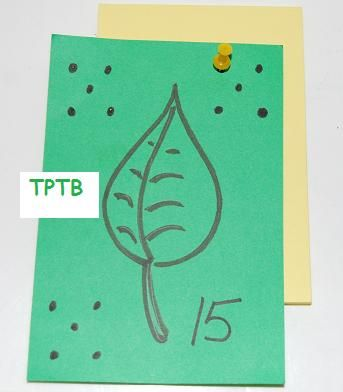 Counting by 5 Leaf Card Templates