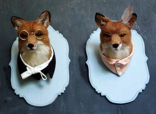 Dapper foxes. What, pray tell good fellow, doth the Vulpes vulpes sayeth?