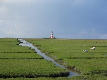 Eine wahrhaft schöne Aussicht an der Nordsee. Grün über Grün wohin man auch schaut. Gefunden auf: http://www.nordsee-suche.de/tourismus-nordsee.htm