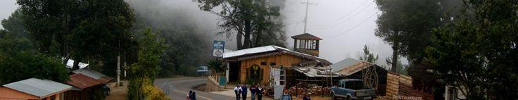 San José del Pacífico: el bosque de los hongos alucinógenos   viajerosustentable