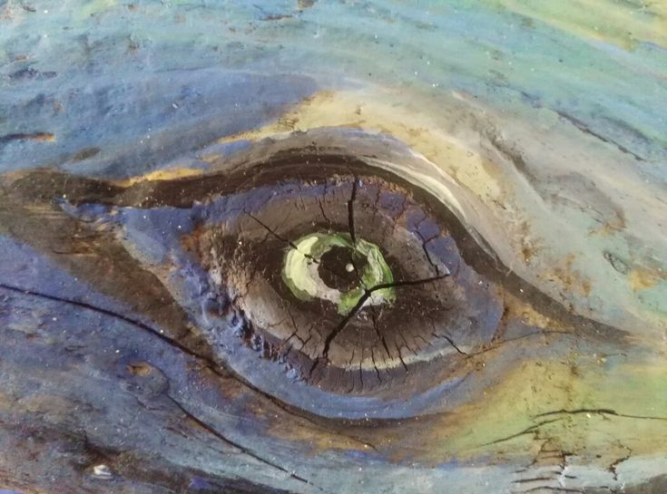 Eye of a Whale (Detail) from the  illustration 'Whale' on Driftwood by Vincent Hyland