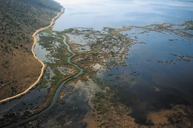 Υποβάθμιση του περιβάλλοντος στον Αμβρακικό κόλπο