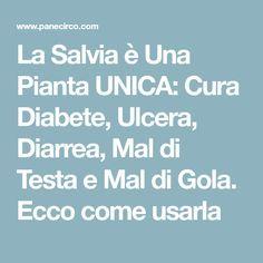 La Salvia è Una Pianta UNICA: Cura Diabete, Ulcera, Diarrea, Mal di Testa e Mal di Gola. Ecco come usarla