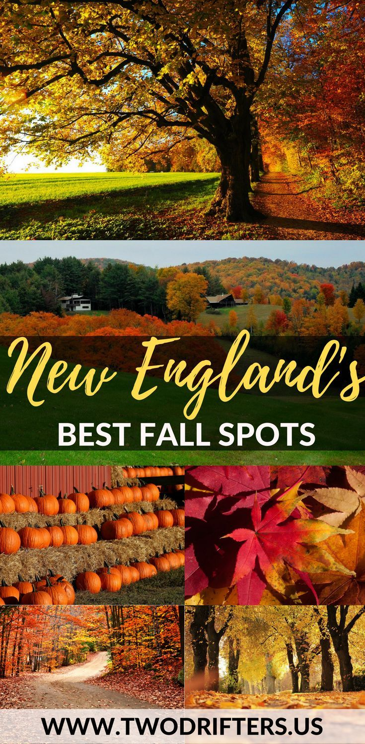 Best All About Travel Images On Pinterest Travel Tips - 8 best places in the us to watch fall foliage