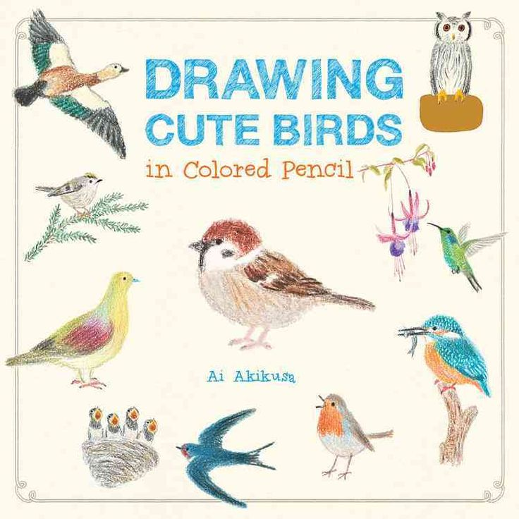 Drawing Cute Birds in Colored Pencil | Colored pencils ...
