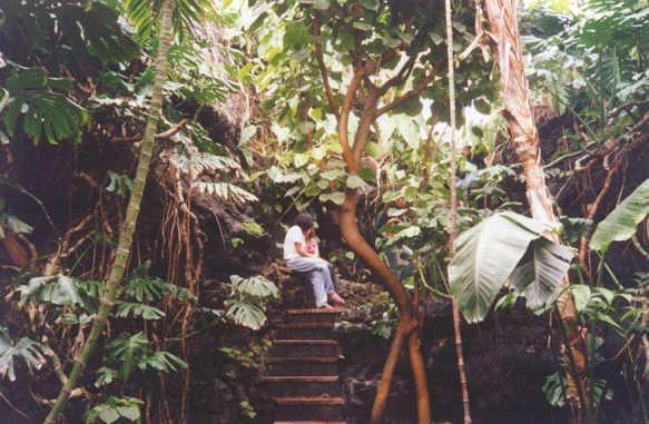 Jardin botanico UNAM Queretaro