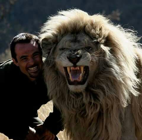 Lion Whisperer Kevin Richardson and friend. WOW.