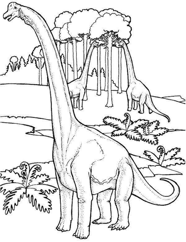 Kolorowanki Darmowe Z Dinozaurami Do Drukowania Kolorowanki
