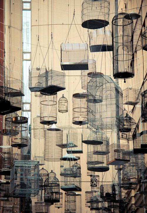 Bird Cages on a Hong Kong street #photography