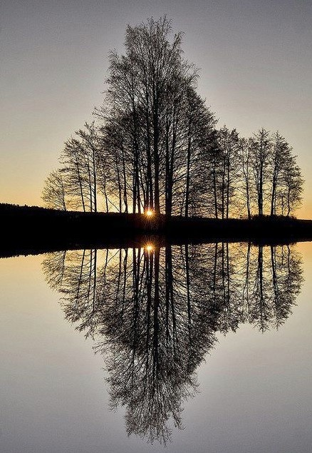 Early morning reflections