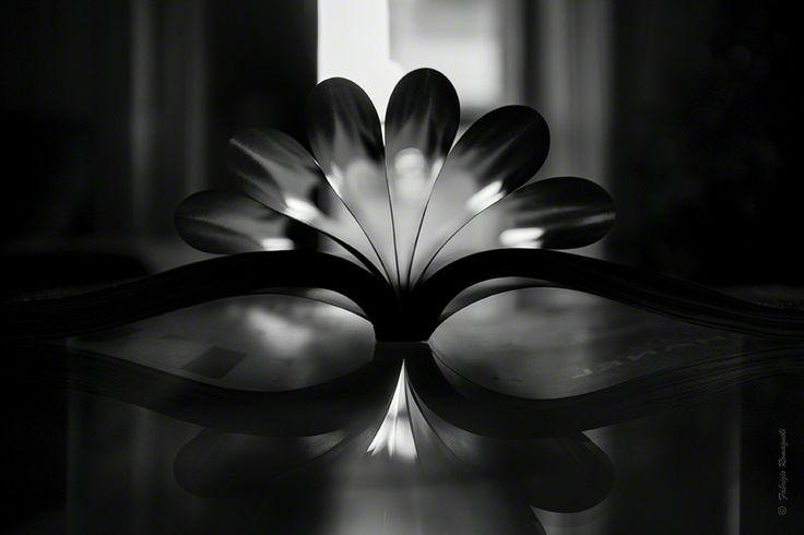 Symmetry by Fabrizio  Romagnoli on 500px