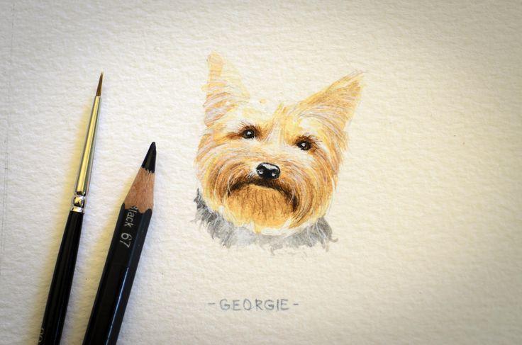 Georgie, miniature watercolour