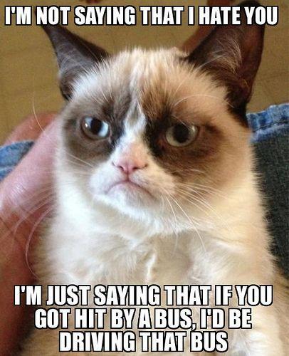 Grumpy Cat Hates You