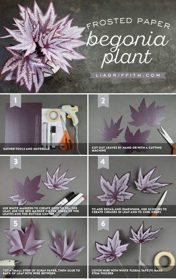 Paper Begonia Plant - Lia Griffith - www.liagriffith.com #paper #paperart #paperlove #papercraft #diyhome #diyhomedecor #diyinspiration #diyidea #diyideas #madewithlia