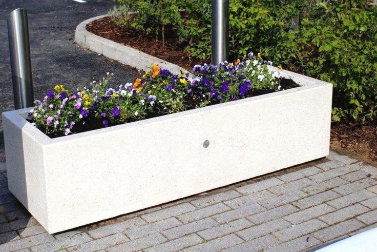 Calera Saenz Peña | Cómo hacer jardineras de cemento para exteriores en 7 pasos