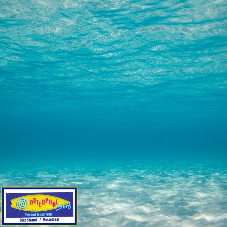 The speed of sound in water is 1,435 m/sec - nearly five times faster than the speed of sound in air. #Interesting #facts #sound