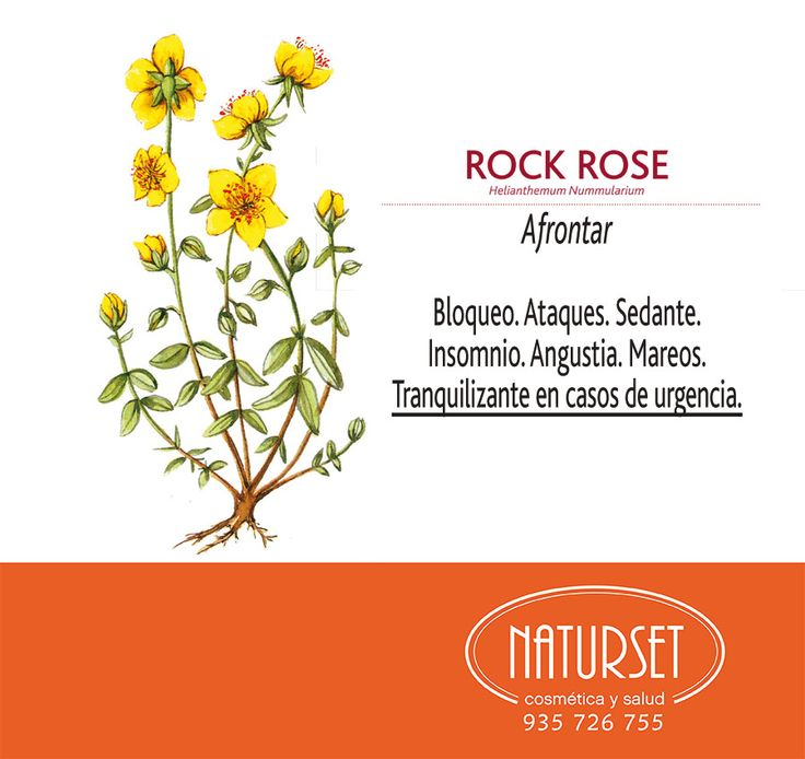 #RockRose: #Bloqueo, #ataques, #sedante, #insomnio, #angustia, #mareos. #Tranquilizante en casos de urgencia extrema. #FloresdeBACH de #Naturset