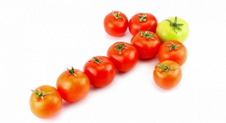 Welche Pflanzen Kräuter Welches Gemüse fressen Schnecken mögen Nacktschnecken nicht gerne