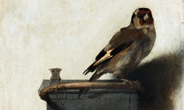 THE GOLDFINCH News: Donna Tartt's bestselling, Pulitzer-winning novel about grief, love and art theft makes its next step towards the big screen   The Guardian (11.20.14)