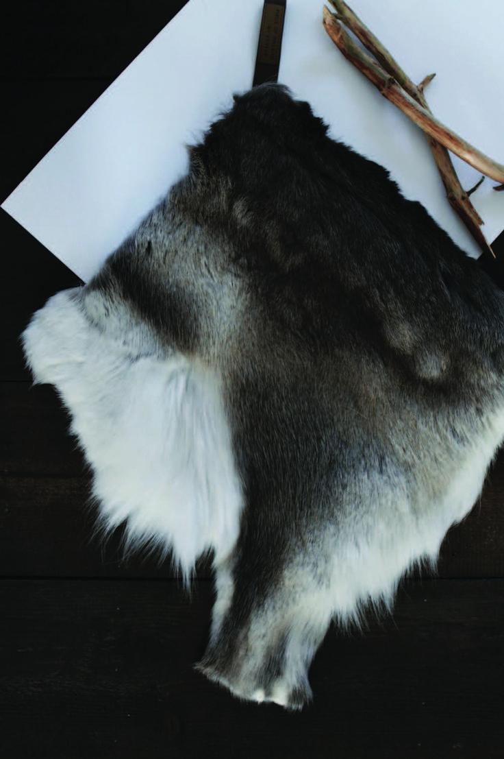 Gedigo Piece of Finland seat cover.  A combination of modern Finnish design and Arctic mysteries. www.gedigo.fi