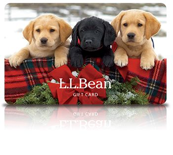 35 best L.L. Bean images on Pinterest | Beans, Ll bean and Maine