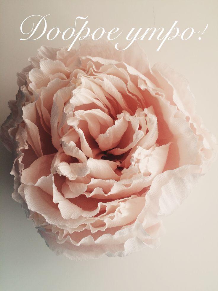 Paper flowers цветочная стена бумажные цветы https://instagram.com/p/BUGpxP_jx-xoeaztciAo4WDetgGMlZWEozIylM0/