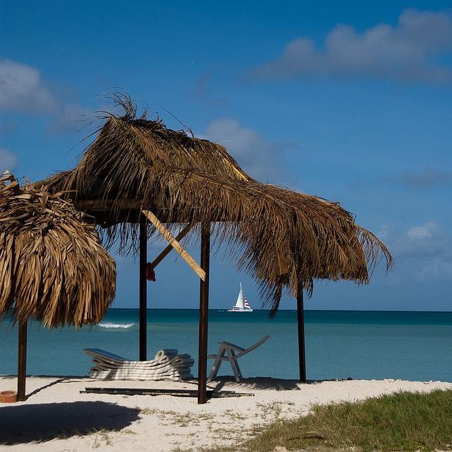 Palapa at Palm Beach - Aruba