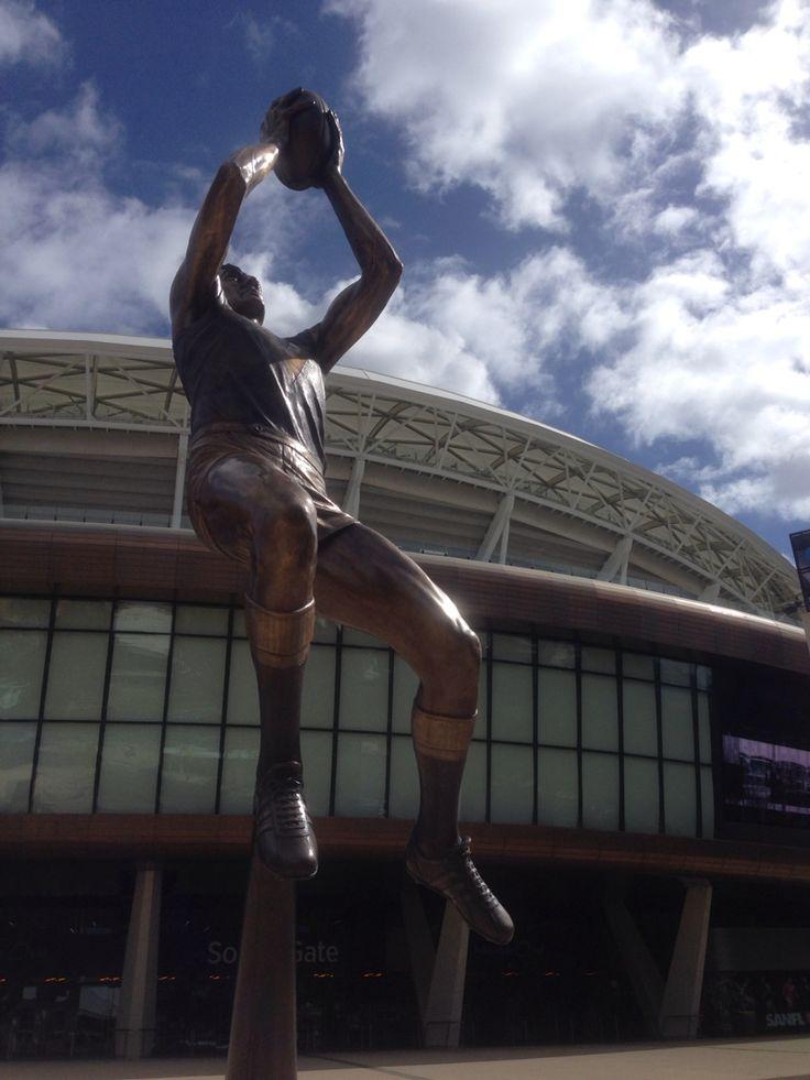 Screamer Adelaide Oval