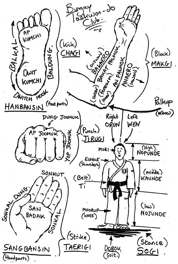 tae kwon do forms - Google Search