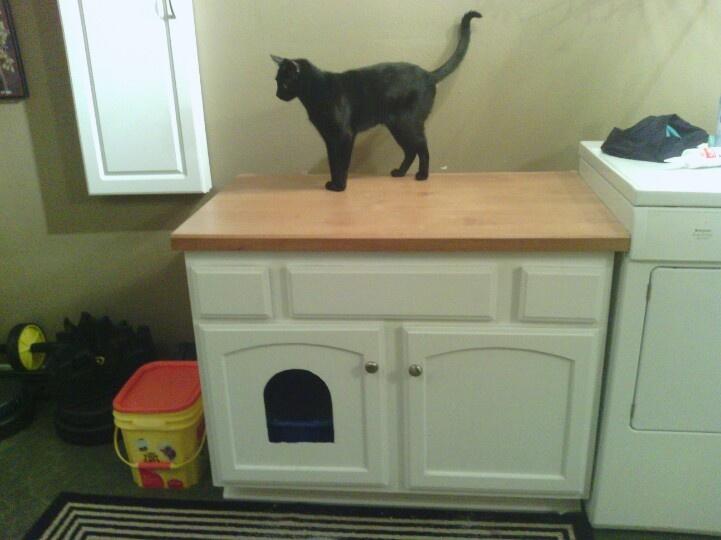Cat Condo Upcycled Bathroom Vanity That I Painted Threw